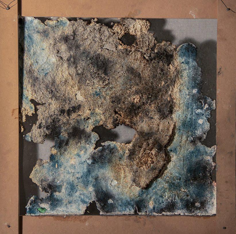 Regina Viqueira, Cosmic headland, 2013, paper pulp, pastel, glass, approx. 20