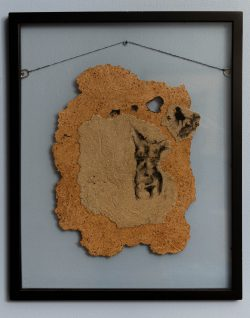 """Bare skin, 2013, paper pulp, ink, 17"""" x 21"""" (framed)"""